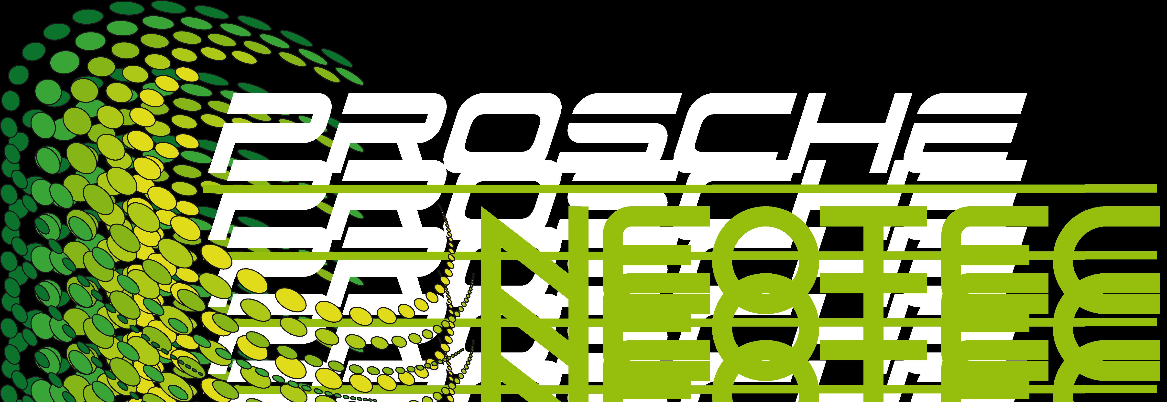 Prosche NeoTec Computerservice Holzminden